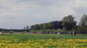 """Erdgasförderbohrung """"Püggen 113"""" in der Altmark ©chef79"""